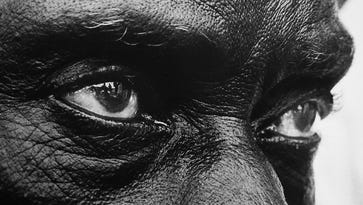 Civil rights marchers can be seen in a man's eye during the march for justice to Selma, Ala.. By Bill Strode, The Courier-Journal.1965