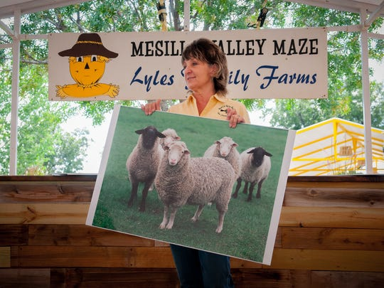 Farmer Anna Lyles talks to a group of school children, (offscreen), at the Mesilla Valley Maze about life on a farm. Lyles' farm has been running the maze, which includes a wide variety of activities for children, for 17 years.