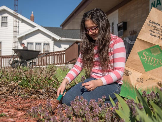 Aubrianna Caldwell, 8, works in her front yard doing