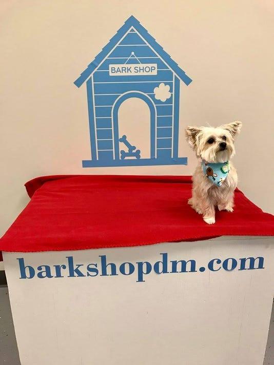 des.urb0207 biz bark shop
