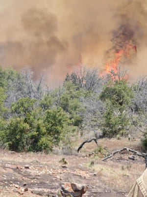 Texas A&M Forest Service officials on Tuesday said emergency crews are responding to a 200-acre fire near Llano, Texas.