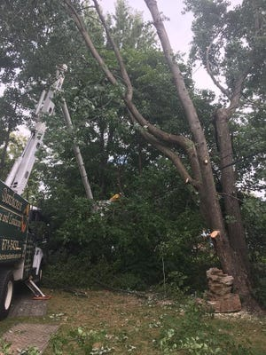 RG&E contractor Birchcrest Tree and Landscape prunes and removes trees and vegetation that could come into contact with power lines.