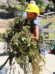 A young volunteer helps clear a trail near Looking Glass Falls at Pisgah Pride Day last year.