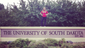 Softball: Taylor Steinfeldt , Ankeny High School (University of South Dakota)