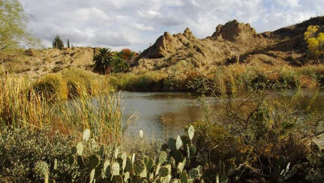 Boyce Thompson Arboretum State Park: At 323 acres, Boyce Thompson Arboretum State Park, near Superior, is Arizona's largest and oldest botanical garden, founded in the 1920s.