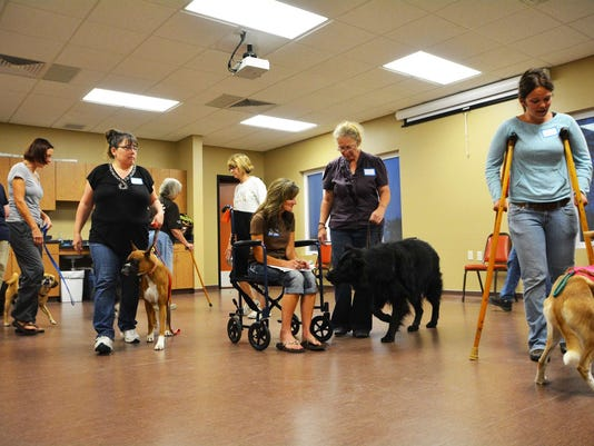 DCHS Therapy Dog Training