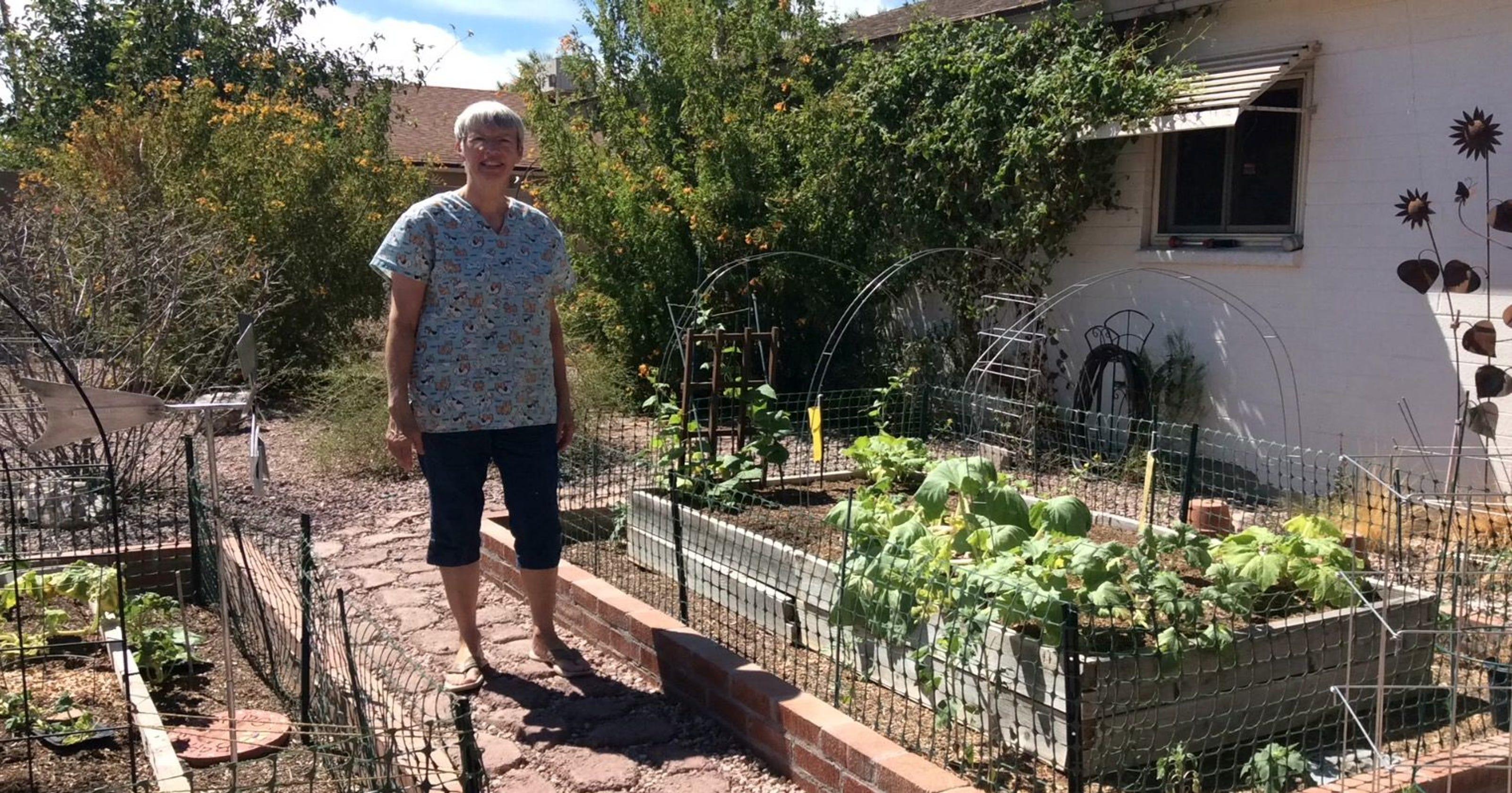 10 tips for Arizona spring planting season Zone A Garden Bed Designs Ideas Html on