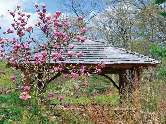 The Laurelwood Arboretum in Wayne