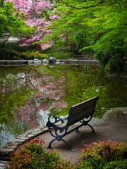 A duck pond at in Lithia Park in Ashland, Oregon is