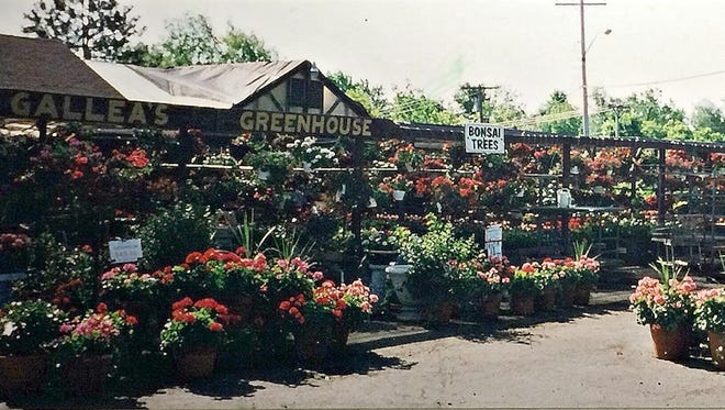 A snapshot of Gallea's Tropical Greenhouse and Florist.