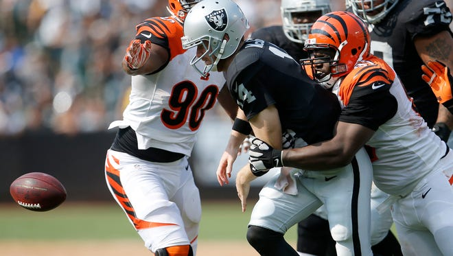 Cincinnati Bengals defensive tackle Geno Atkins, right, sacks and causes a fumble from Oakland Raiders quarterback Matt McGloin in the Bengals' 33-13 win over the Raiders.