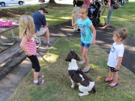 Stayton Police K9 intern, Dallas, had as much play in him as the kids in Westown Park could give during National Night Out.