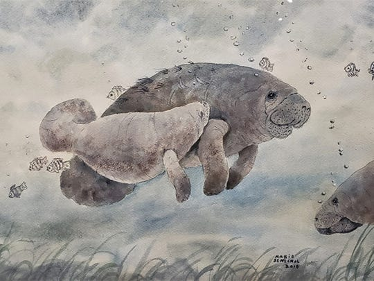 """Mother Manatee"" by Marie Senechal."