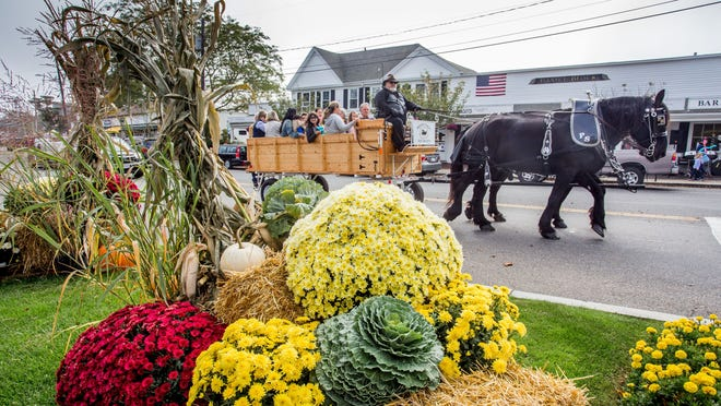 A horse-drawn carriage operated by John Digi of Paradise Stables rides past the fall decorations from Mahoney's Garden Center during a previous  Osterville Village Fall Festival Day.