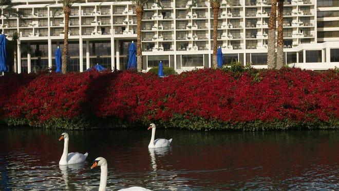 The JW Marriott Desert Springs Resort & Spa in Palm Desert is the latest The Biggest Loser Resort.