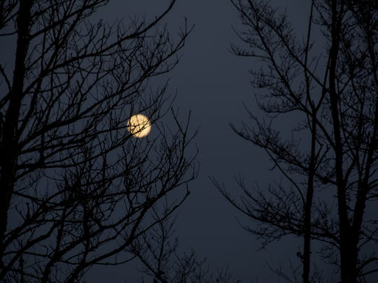 Take a walk in the moonlight in Whitesbog Village.