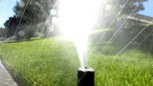 Lawn sprinklers may make a comeback in the towns of Braintree, Randolph and Holbrook as the tri-town water board considers lifting restrictions.