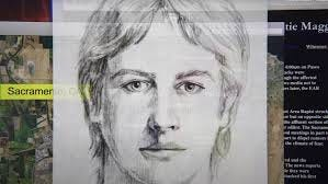 """""""I'll Be Gone in the Dark"""" explores the Golden State Killer case."""