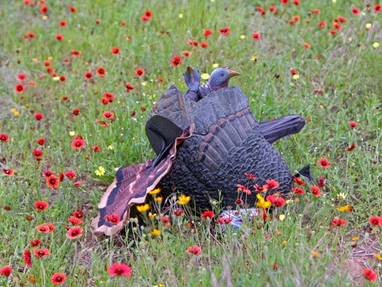 A pile of decoys in the wildflowers at Mustang Ranch.