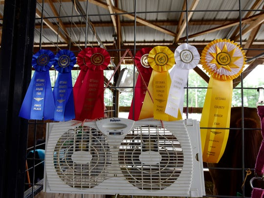Fans in the animal stalls help cool things off at the