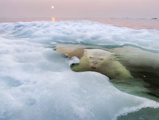 2013 National Geographic Photo Contest Grand Prize Winner