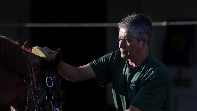 Eduardo Luna helps give Justify a bath after a morning workout Thursday at Churchill Downs. Luna is employed as a groom for trainer Bob Baffert.