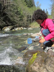 The Opal Creek Ancient Forest Center — located at the history mining camp Jawbone Flats — is now devoted to environmental education.