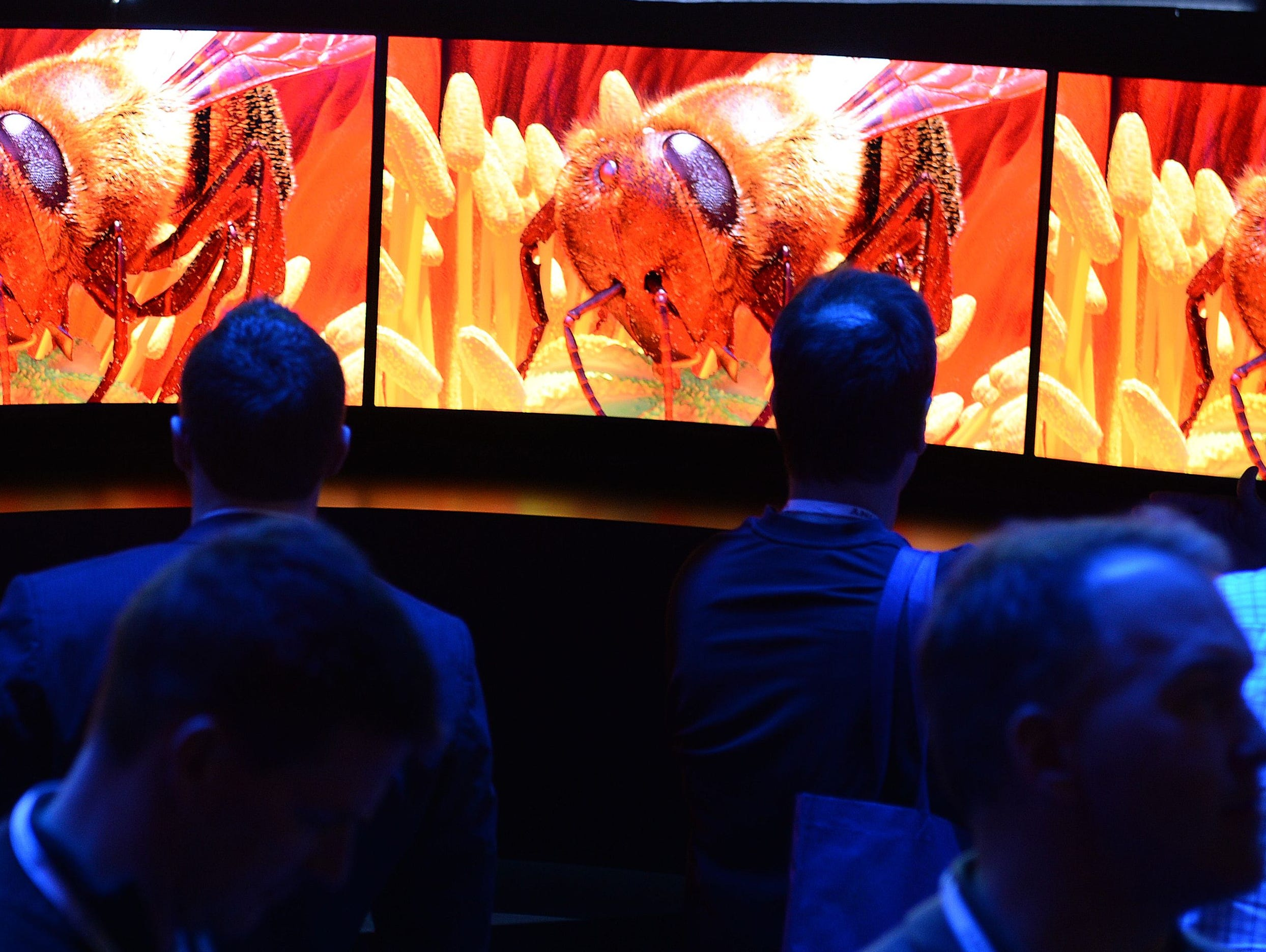 Attendees look at the 4K Curved OLED display at the Panasonic booth at last year's Consumer Electronics Show.