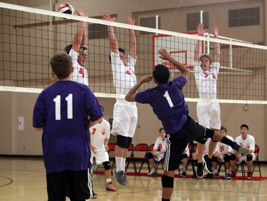 Members of the Palm Valley High School boys volleyball
