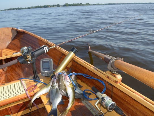 Anglers caught nearly 60 percent of the 15- to 18-inch