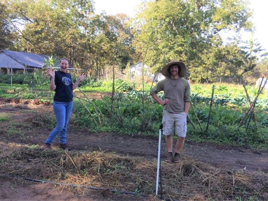 Gardeners can learn many best management practices from small diversified vegetable farmers.