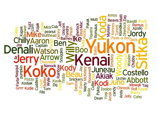 Word cloud shows the names submitted by the public
