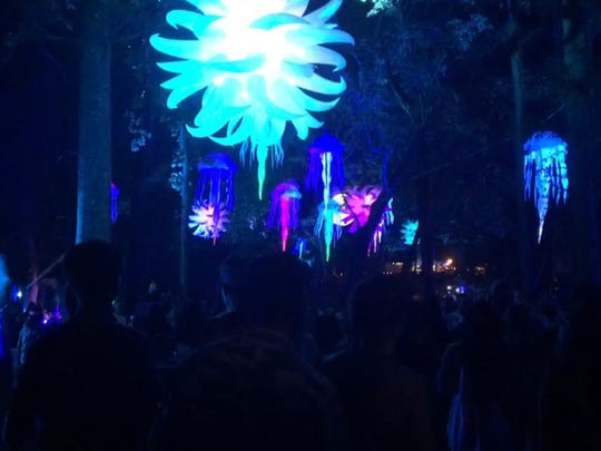 The Thicket, a forest cut-through at Firefly Music