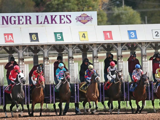 And they're off! Horses explode from the starting gate at the start of the first race at Finger Lakes Gaming and Racetrack in Farmington Tuesday, Oct. 25, 2016.