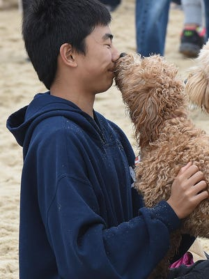 Dewey Beach went to the dogs on Saturday, April 30 as several hundred dogs and owners came to the beach to have fun and let the dogs run their energy out.