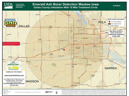 The tree-killing emerald ash borer has been identified in a tree in rural southeast Dallas County, the Iowa Department of Agriculture said. It's the first time the beetle has bee found in the Des Moines-metro area.