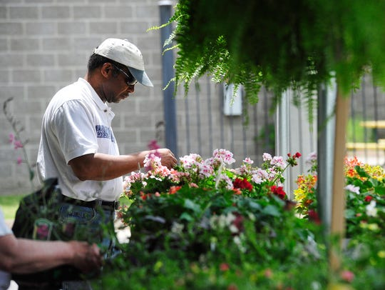 Griff Watson shops for flowers at the Flowers Garden