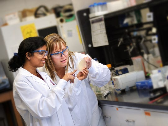 Biochemistry professor Shelley Lusetti, right, works