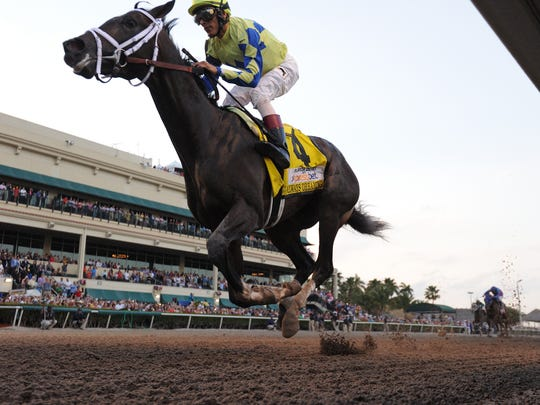 Horses race at Gulstream Park in this file photo from the Florida Derby on April 1, 2017.