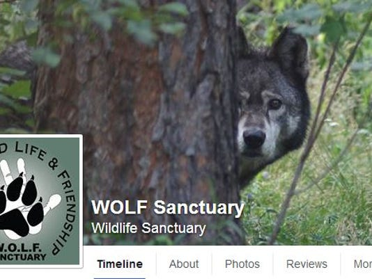FTC0829-ll WOLF FB Hacked