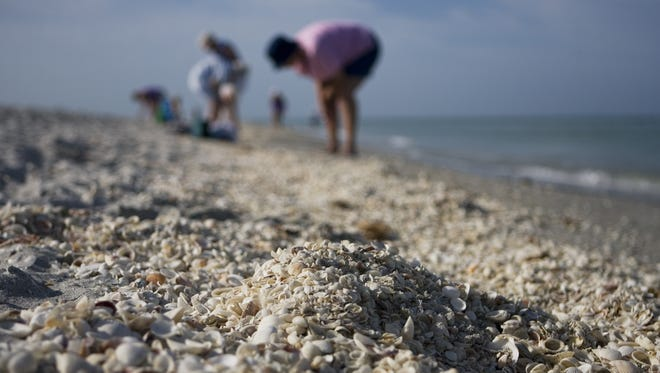 Smithsonian Magazine  named The Beaches of Fort Myers & Sanibel one of the top five beaches in the U.S. for beachcombing.