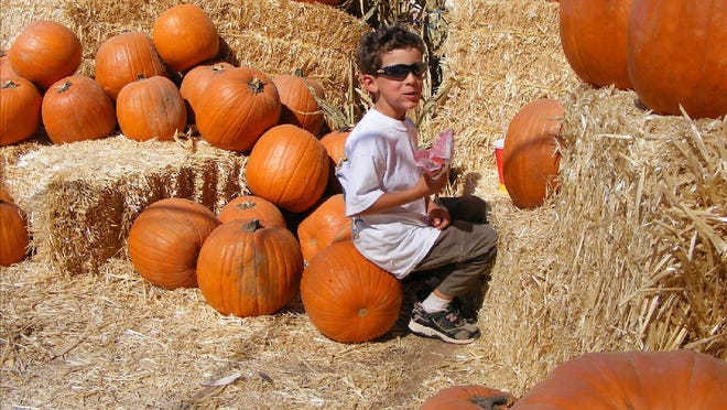 Az Halloween 2020 Halloween in Arizona: How to trick or treat safely during COVID 19