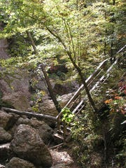 Clark Creek Nature Area near Woodville offers hiking