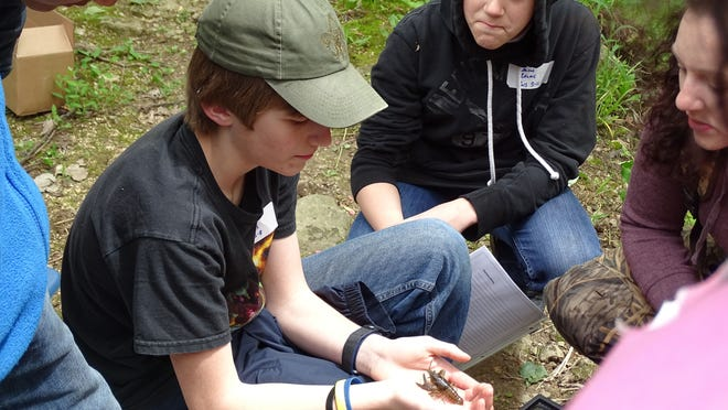 For some of the Fremont Middle School seventh-graders who visited Christy Farm Nature Preserve on Tuesday, holding a crawfish was the highlight of the field trip.