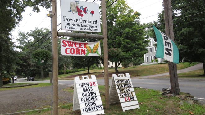 The farm stand at Dowse Orchards on North Main Street in Sherborn.