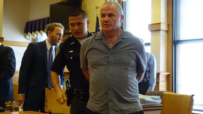 Darrell Domokos is taken into custody after pleading guilty to three felony charges.