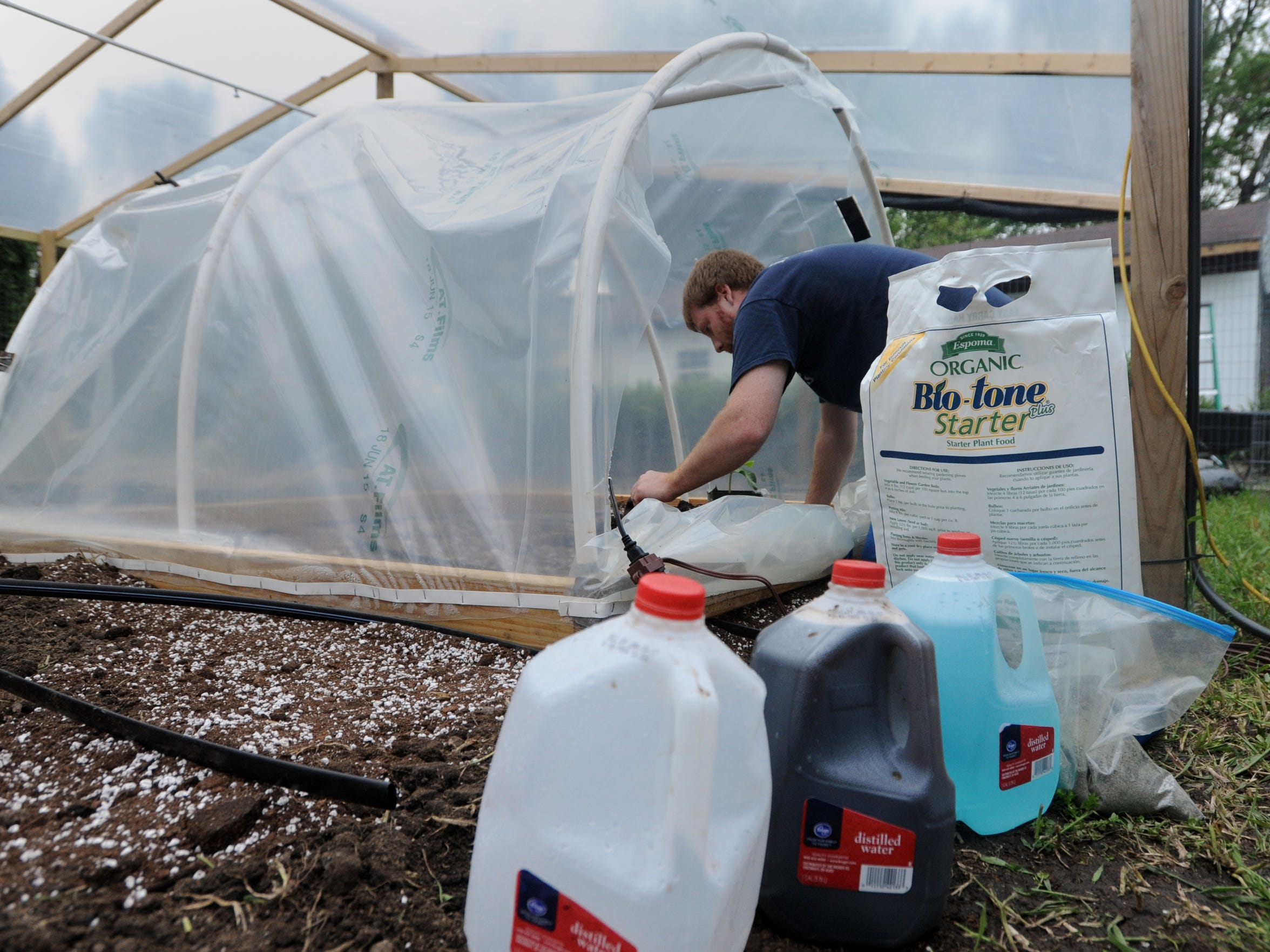 Rusty Ortman uses two gallons of his fertilizer mixtures per plant May 3  at the Ortman Family Greenhouse.