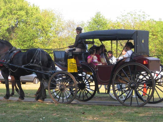 Horse-Buggy-1-