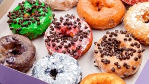 These are some of the doughnuts that Fractured Prune offers.