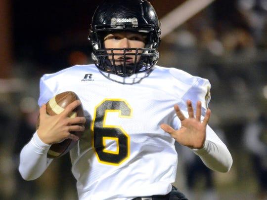 Hendersonville sophomore quarterback Brett Coker.